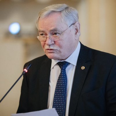 Sergienko Valentin Ivanovich  vice-President of the Russian Academy of Sciences, Chairman of the FEB RAS